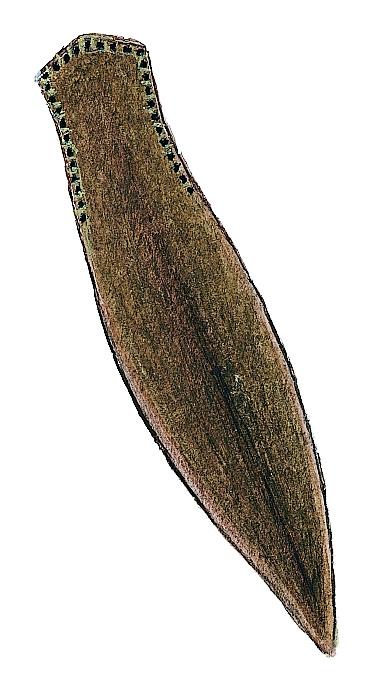 Polycelis nigra-tenuis