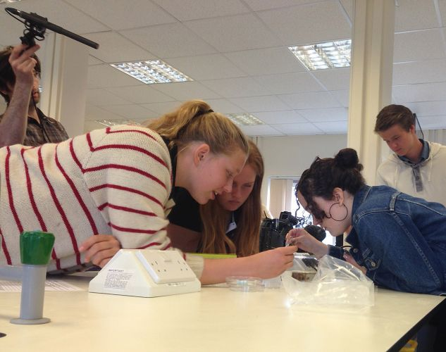Students examining virtue discs