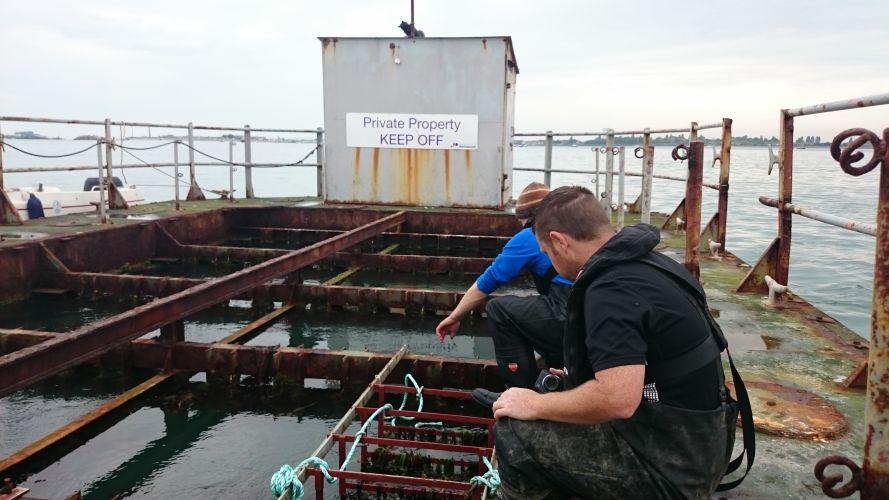 IMS Marine Research Platform