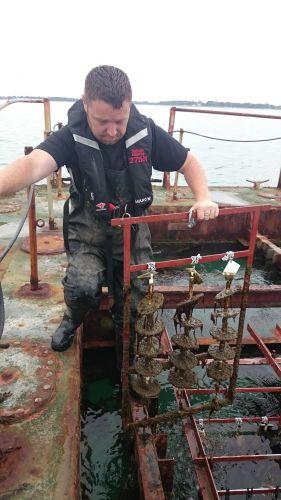 Virtue racks on IMS Marine Research Platform